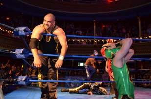 Green Ant is a really nice guy. Photo by J.R. Blackwell