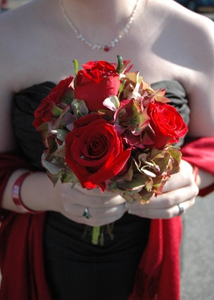 Roses_4431433403_l