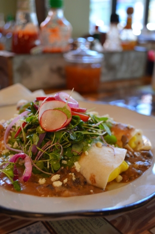 Enfrijoladas: Food Photography
