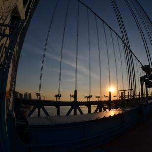 24 Hour Photoshoot: Caged Sun