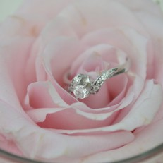 Wedding, Flower, Ring, Pink, Wedding Photographer