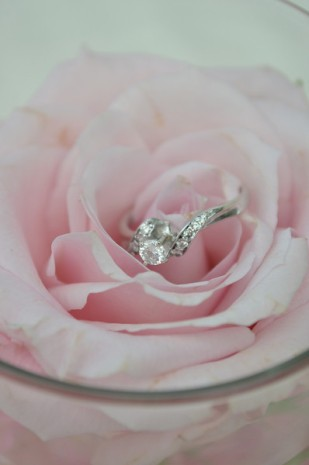 Wedding, Flower, Ring, Pink, Wedding Photographer