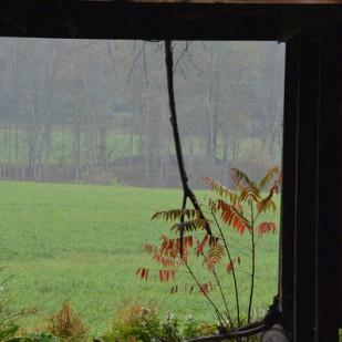 NY Countryside